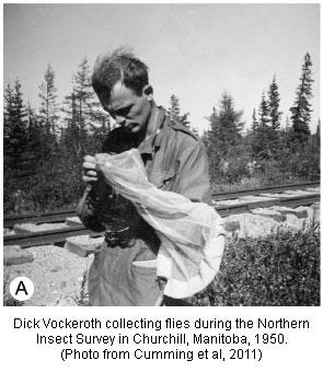 Dick Vockeroth in Churchill Manitoba