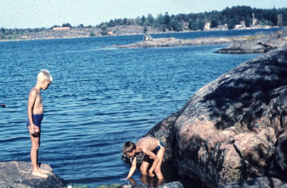 The author (left) and a friend looking for moon jellies on the Baltic Sea coast, Arkösund, Sweden, 1958 (Photo R. Lindgren).