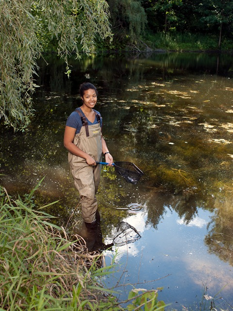 This is me collecting backswimmers from a pond at the Koffler Scientific Reserve. Photo credit: Chris Thomaidis.