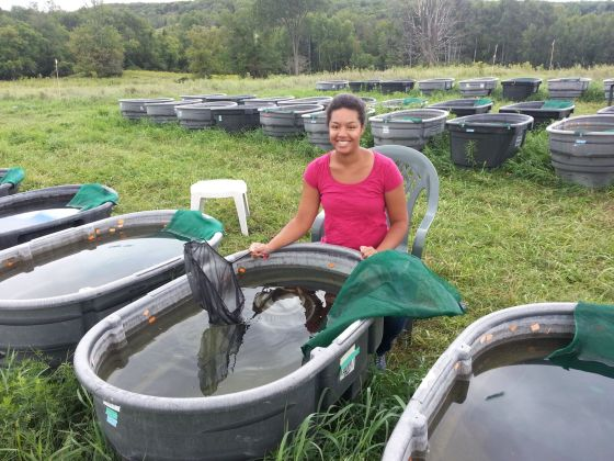 This is me, checking the artificial ponds for backswimmers. Photo credit: Betty Dondertman.