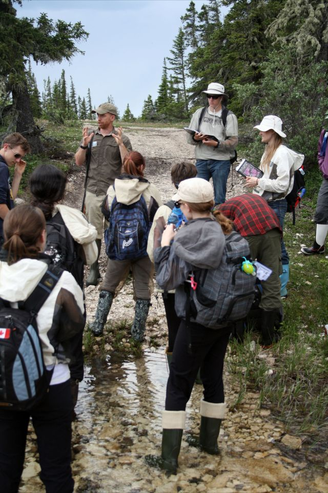Students in the Arctic Ecology field course learning from Hymenopterist extraordinaire Alex Smith